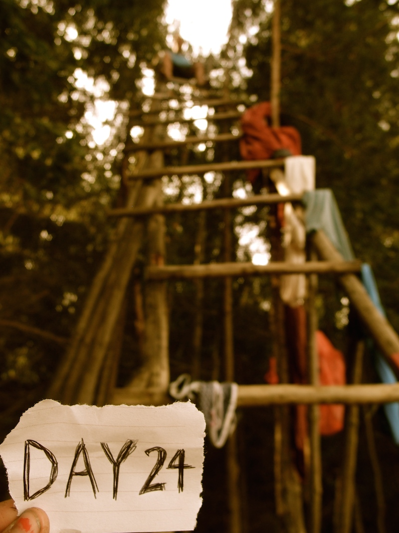 Day 24: Climbing homemade ladders in the Czech forest